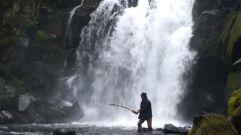 halden-fishing